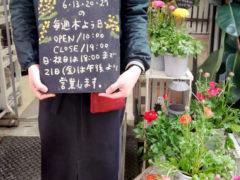 iihana定休日を更新しました